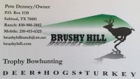 Brushy Hill
